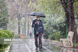 عکس/ بارش برف بهاری در قزوین