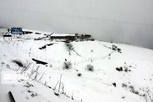 عکس/ بارش برف بهاری در آستارا