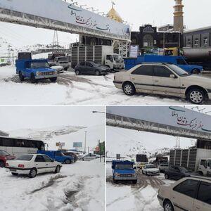 عکس/ بارش برف در جاده هراز