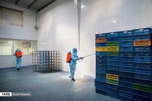 عکس/ رزمایش مقابله با کرونا در کارخانجات تهران