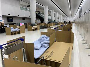 رختخوابهای مقوایی برای قرنطینه مسافرین در فرودگاه +عکس