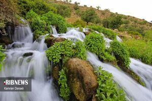 عکس/ طبیعت بکر کهگیلویه و بویراحمد