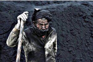 همه کارگران زیر خط فقر زندگی میکنند