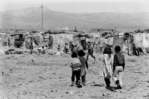 گزارشی از وضعیت وحشتناک زندگی در جنوب شهر تهران+ سند