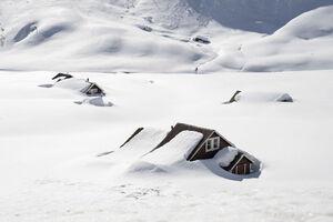 عکس/ خانههای دفن شده زیر برف