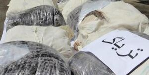 فیلم/ دستگیری قاچاقچیان مواد مخدر در تنگه هرمز
