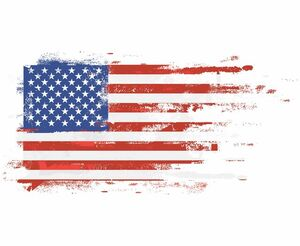 پرچم آمریکا نمایه