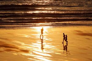 سواحل دنیا در بحران کرونا