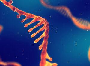 ژنهای نادر عامل بروز کرونا میشوند؟