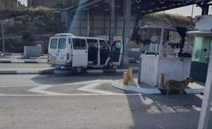 فیلم/ حمله استشهادی در کرانه باختری