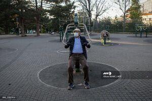 عکس/ ورزش سالمندان در پارک زیر سایه کرونا