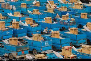 """عکس/ اهدای ۳۰۰ جهیزیه در رزمایش """"کمک مومنانه"""""""