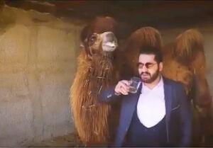 فیلم/ نخستین صحبتهای نوشنده ادرار شتر پس از دستگیری