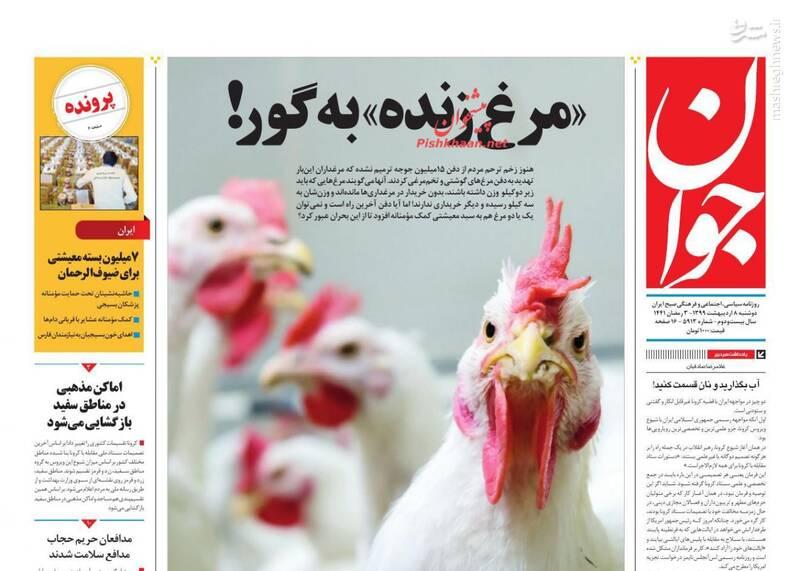 جوان: «مرغ زنده» به گور!
