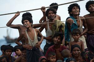 فیلم/ مرگ ۴۰ روهینگیایی در اثر گرسنگی!