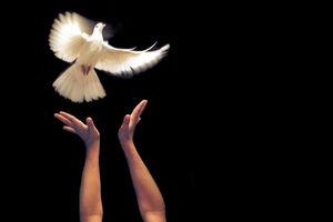 فیلم/ ماجرای جالب آزادی یک زندانی بعد از ۹ سال