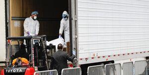 کشف اجساد در کامیونها و نگهداری با قالبهای یخ در نیویورک