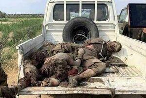 تصاویر دلخراش از جنازه داعشیها