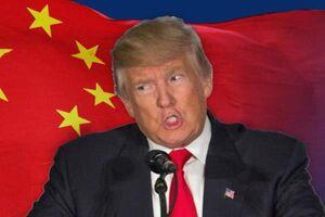 ترامپ: چین گاو شیرده دموکراتها است
