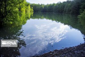 دریاچهای دیدنی در دل جنگلهای شمال