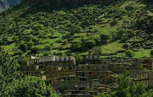 عکس/ طبیعت بکر روستایی در کردستان