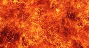 آیا شیعیان وارد آتش جهنم نمی شوند؟