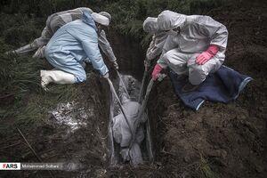 عکس/ جهاد روحانیون بسیجی
