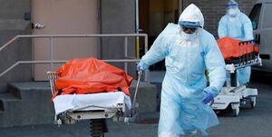 قربانیان کرونا در آمریکا به 73431 نفر رسید