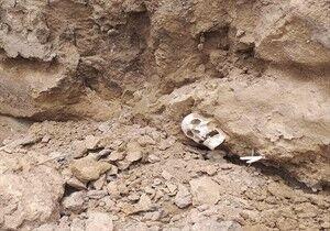 ماجرای اسکلتهای کشف شده در گورهای بندرترکمن چه بود؟