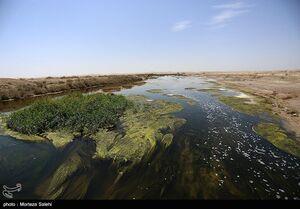 عکس/ تالاب گاوخونی اصفهان را ببینید