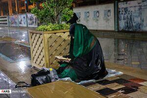 عکس/ احیای شب نوزدهم در جوار امام رئوف