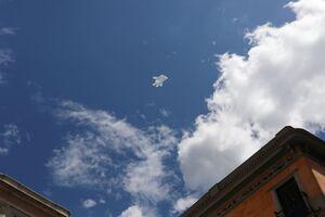 دستکش رها شده در آسمان