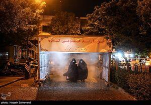 عکس/ تونل ضدعفونی کننده در مسجد ارک