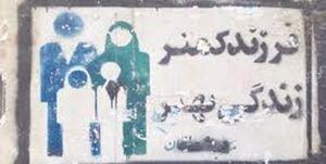 سیاست پهلوی درباره کم کردن موالید چگونه بود؟ +عکس