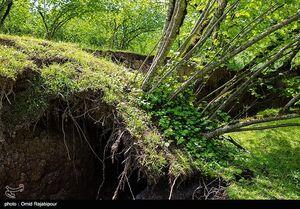 عکس/ رانش زمین در گیلان