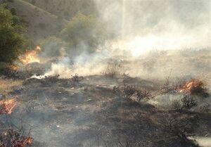 آخرین اخبار از آتشسوزی گچساران
