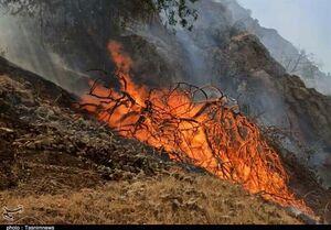 جدیدترین تصاویر از آتشسوزی جنگلها و مراتع گچساران