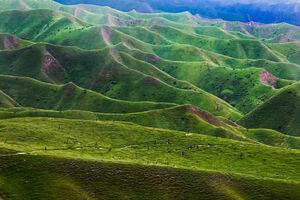 تصویری دیدنی از طبیعت بهاری ترکمن صحرا