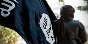مسئول اطلاع رسانی داعش دستگیر شد