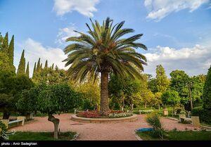 عکس/ بازگشایی باغ ارم شیراز