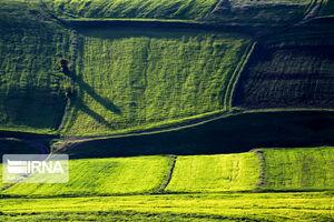 عکس/ طبیعت بهاری دامنههای سبلان