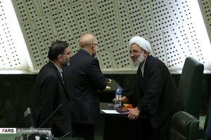 عکس/ حاشیههای دومین نشست علنی مجلس یازدهم