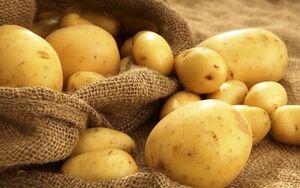 فیلم/ چالش قیمت سیبزمینی در گلستان