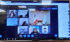 عکس/ نشست خبری آنلاین سخنگوی شورای نگهبان