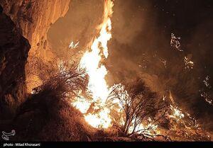 واکنش اهالی فوتبال به آتش سوزی جنگل های زاگرس +تصاویر