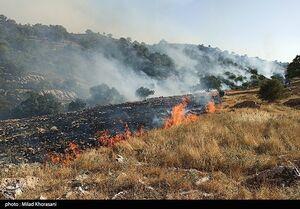تصاویر ماهوارهای آتشسوزی جنگلهای زاگرس