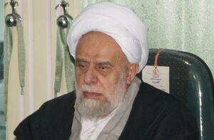 تعجب آیتاللهامینیان از قرائت وصیت نامه امام توسط رهبری+ عکس