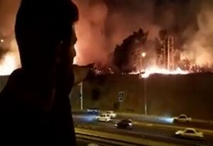 فیلم/ آتش سوزی در پارک چیتگر تهران