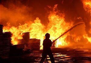 جزئیات آتشسوزی در جنگل چیتگر
