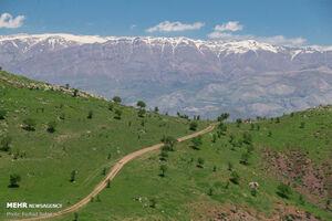 عکس/ طبیعت بکر قزوین را ببینید